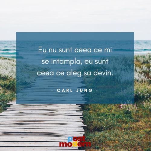 Citat motivational, Carl Jung