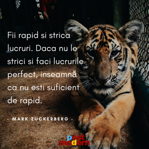 Citat motivational, Mark Zuckerberg