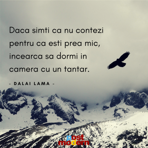 Citat motivational, Dalai Lama