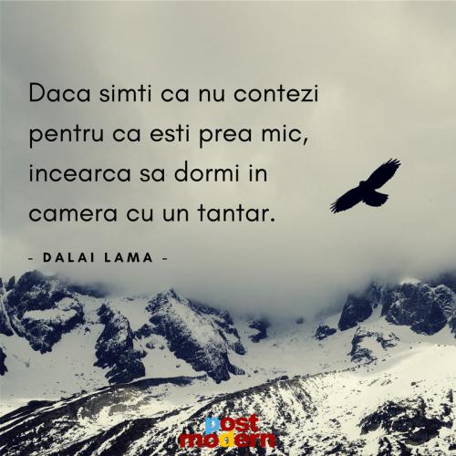 Citat motivational, Dalai Lama