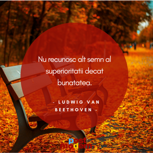 Citat motivational Ludwig Van Bethoven