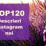 descrieri instagram top noi