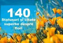 statusuri citate flori