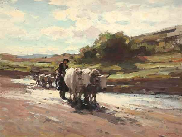 20. car-boi picturi faimoase