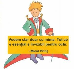 citate micul prinț