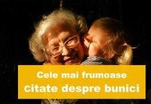 top citate despre bunici
