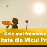 top citate din micul prinț