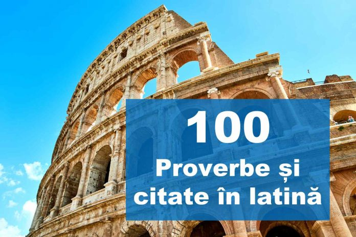 top citate in latina proverbe in latina expresii latinesti